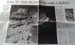 L'articolo apparso sulNew York Times