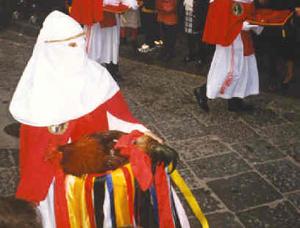 Il gallo ornato con nastri multicolore portato in processione (vivienna.it)
